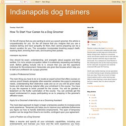 Indianapolis dog trainers: How To Start Your Career As a Dog Groomer