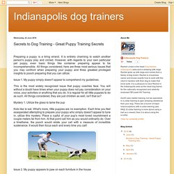 Secrets to Dog Training - Great Puppy Training Secrets