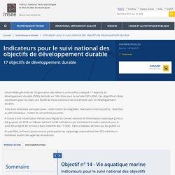 ONU - 17 objectifs EDD : les Indicateurs pour le suivi national des objectifs - Agenda 2030