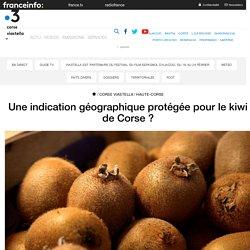 FRANCE 3 CORSE 05/03/17 Une indication géographique protégée pour le kiwi de Corse ?