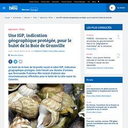FRANCE BLEU 07/02/19 Une IGP, indication géographique protégée, pour le bulot de la Baie de Granville