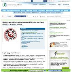 Médecine traditionnelle chinoise (MTC) - Qi, Yin, Yang et autres grandes forces
