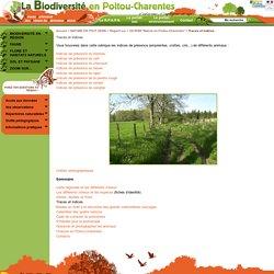 Traces et indices - Biodiversité en Poitou-Charentes