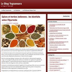 Epices et herbes indiennes : les bienfaits selon l'Ayurveda