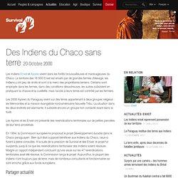 Des Indiens du Chaco sans terre