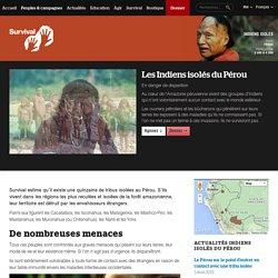 Indiens Isolés du Pérou