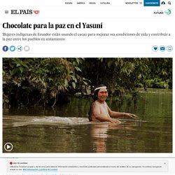 Indígenas en Ecuador: Chocolate para la paz en el Yasuní