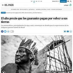 Indígenas en Brasil: El alto precio que los guaraníes pagan por volver a sus tierras