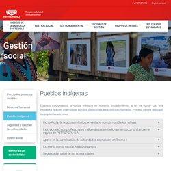Pueblos indígenas : Responsabilidad Social Ambiental de Petroperú S.A.
