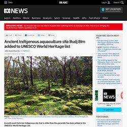 Ancient Indigenous aquaculture site Budj Bim added to UNESCO World Heritage list