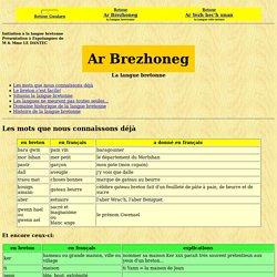 Langue bretonne: le minimum indispensable pour faire connaissance avec la langue bretonne