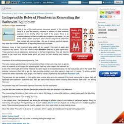 Indispensible Roles of Plumbers in Renovating the Bathroom Equipment by Brynn O'Flynn