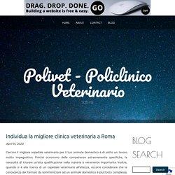 Individua la migliore clinica veterinaria a Roma
