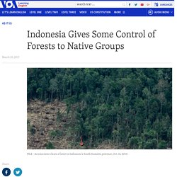 Indonesia Gives Some Control of Forests to Native Groups