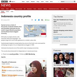 Indonesia country profile