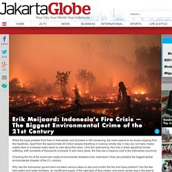 Erik Meijaard: Indonesia's Fire Crisis — The Biggest Environmental Crime of the 21st Century