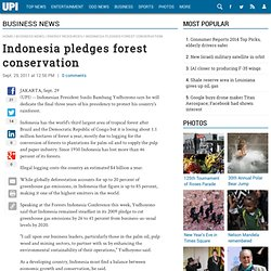 Indonesia pledges forest conservation