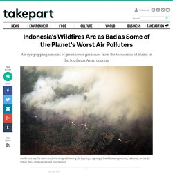 Indonesia's Wildfires Are as Bad as Some of the Planet's Worst Air Polluters