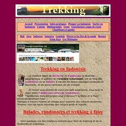 Indonésie - trekking, sur voyageindonesie.net