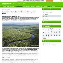 La protection des forêts indonésiennes fait un pas en avant