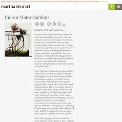 Indoor Water Gardens - Martha Stewart Home & Garden