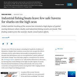 Industrial fishing boats leave few safe havens for sharks on the high seas