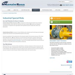 Industrial Special Risks - McKenzie Ross