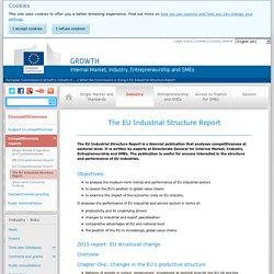 The EU Industrial Structure Report