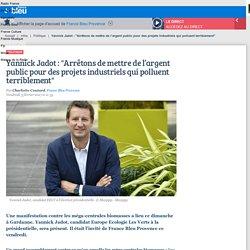 """Yannick Jadot : """"Arrêtons de mettre de l'argent public pour des projets industriels qui polluent terriblement"""""""