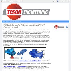 EHP Eagle Pumps for Different Industries at TESCO Engineering Saudi : TESCO Engineering