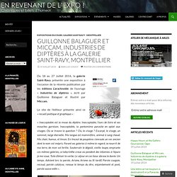 Guillonne Balaguer et Miccam, Industries de diptères à la galerie Saint-Ravy, Montpellier