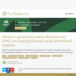 PIGSITE 19/01/21 Mexico's ag industry warns that bans on GMO corn and glyphosate could shrink food supplies