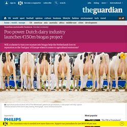 Poo power: Dutch dairy industry launches €150m biogas project