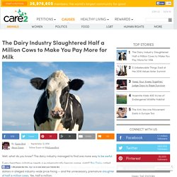 Dairy Industry Slaughtered Half A Million Cows To Make You Pay More For Milk
