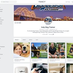 Indy Dog Trainer Profile on Fancy