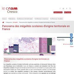 Panorama des inégalités scolaires d'origine territoriale en France