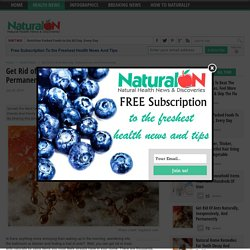Get Rid of Ants Naturally, Inexpensively, and Permanently - NaturalON
