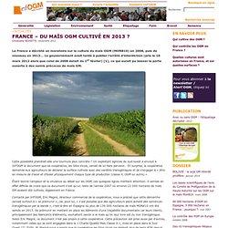 FRANCE – Du maïs OGM cultivé en 2013?