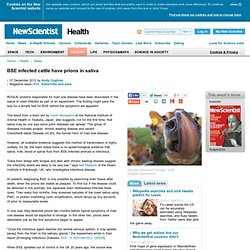 BSE infected cattle have prions in saliva - health - 07 December 2012