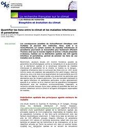 Quantifier les liens entre le climat et les maladies infectieuses et parasitaires - Extrait de la Lettre n°17 Programme I
