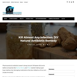 Kill Almost Any Infection: DIY Natural Antibiotic Remedy · The Mind Unleashed