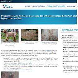 Bactéries - infections bactériennes de la peau - Beco - Belgique