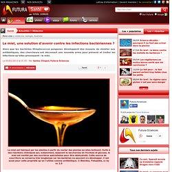 Le miel, une solution d'avenir contre les infections bactériennes ?