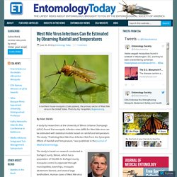 ENTOMOLOGY TODAY 30/06/16 West Nile Virus Infections Can Be Estimated by Observing Rainfall and Temperatures