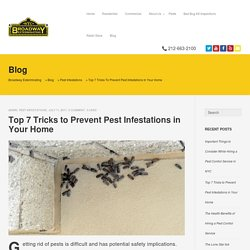 Top 7 Tricks to Prevent Pest Infestations in Your Home