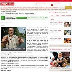 « La Ramée infestée par les écrevisses » - Toulouse