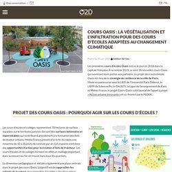 Cours oasis : infiltration et végétalisation pour des cours d'écoles durables