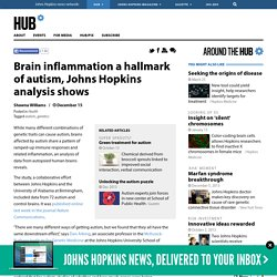 Brain inflammation a hallmark of autism, Johns Hopkins analysis shows