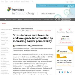 Stress Induces Endotoxemia and Low-Grade Inflammation by Increasing Barrier Permeability
