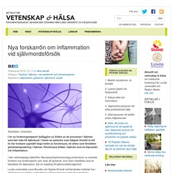 Nya forskarrön om inflammation vid självmordsförsök « Aktuellt om Vetenskap och Hälsa